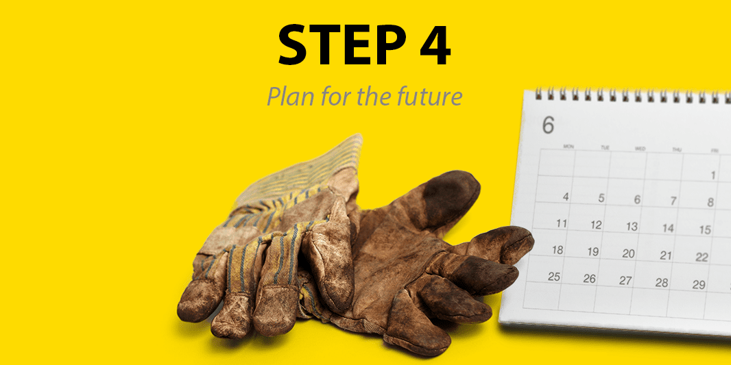 Step 4: Plan for the future